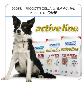 LineaActive_cane