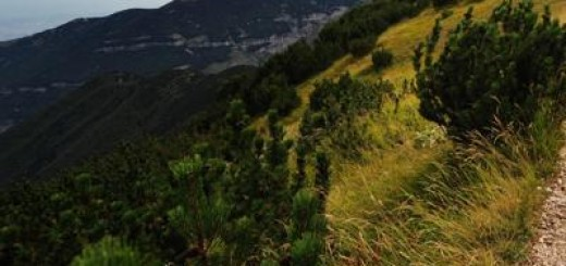 montagna_ftgrmma-kDm--1280x960@Produzione